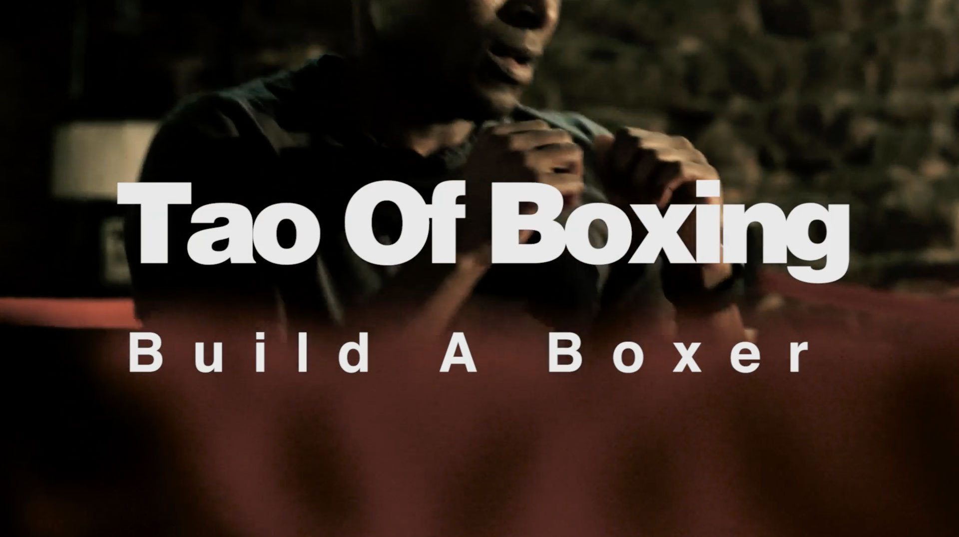 Tao of Boxing Titles